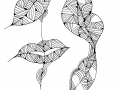 lippenbaum-2